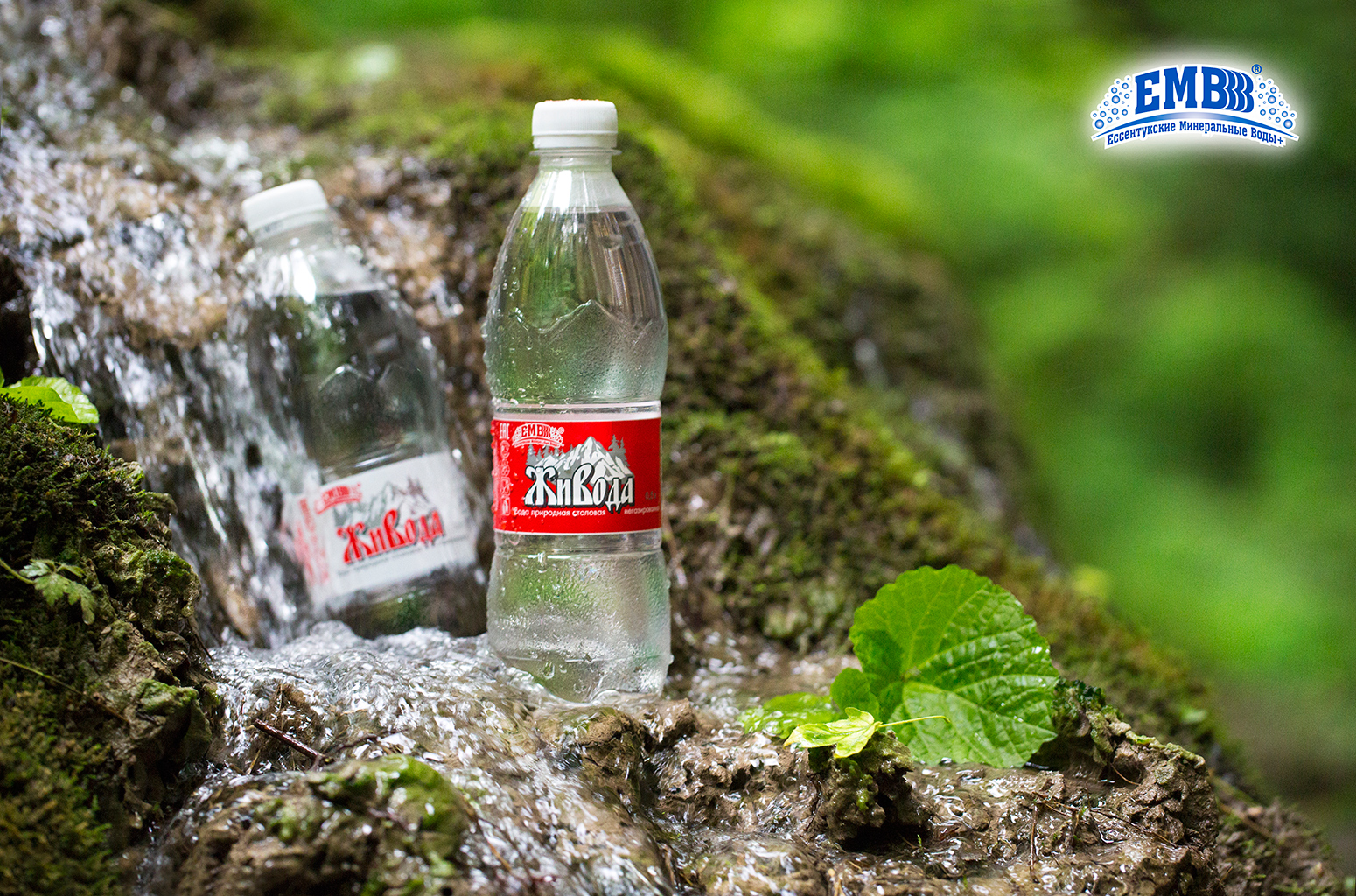 ZhiVoda, natural drinking non-carbonated water